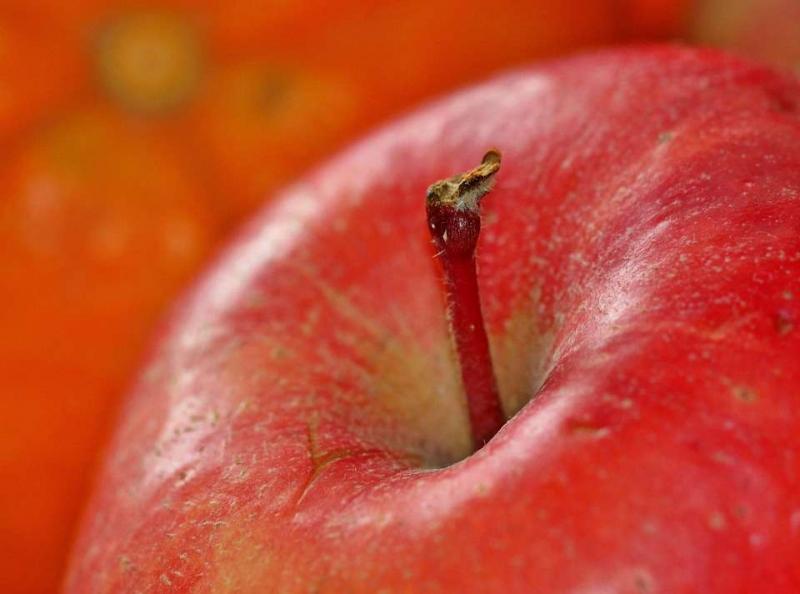血脂高吃什么水果好千万别碰五种食物